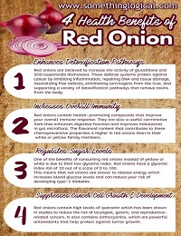 ONIONS COULD PROTECT AGAINST CANCER – SOMETHING LOGICAL