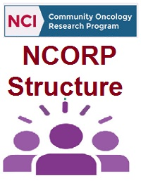 NCORP STRUCTURE