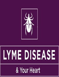 HOW DOES LYME DISEASE AFFECT THE HEART?